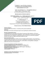 Diritto Industriale Programa