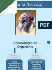 9.ppt.s.nervoso.2.pdf