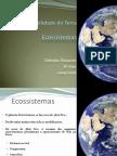 26713130-1-Ciencias-Naturais-8º-Ano-Ecossistemas.pdf
