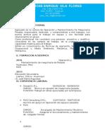 Vila Flores Jose Enrique Cv Actua1 (1)