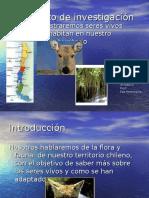 power-zonas-geo-y-flora-y-fauna-1224550553528912-9.ppt