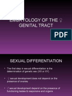 Embryology of the Genital Tract