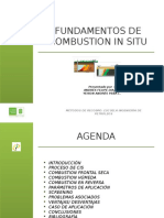 Fundamentos de Combution in Situ