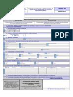 FORMULARIO RUC01A.pdf