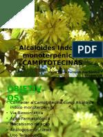 Camptotecina Apt Original