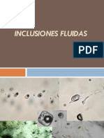 3_1_Inclusiones_fluidas.pdf