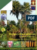 B2-Monocotiledoneas.
