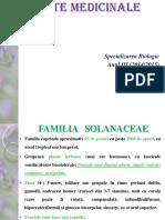Plante Medicinale 1