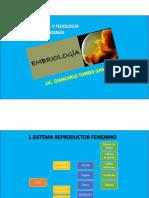 13-Reproducción y Embriología