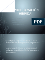 programacion Hibrida (1)