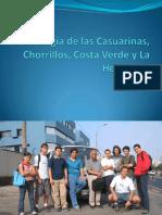 Geología de las Casuarinas, Chorrillos, Costa.pdf