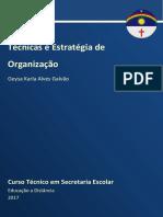 Caderno de Sec. Escolar ( Técnicas e Estratégias de Organização) 2017