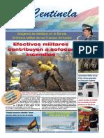 pdfcentinela_2_.pdf