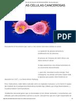 Sin Azucar Las Celulas Cancerosas Mueren - Barcelona Alternativa
