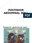 Lecture 11 Posterior Abdominal Wall