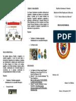 Triptico Pag 1 - Copia
