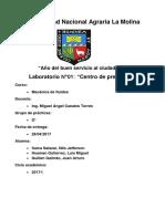 LAB- Fluidos - Informe 1