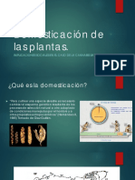 Presentacion Foro Cabanico PDF