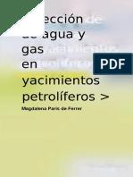 Inyeccion de Agua y Gas en Yacimientos Petroliferos Magdalena Ferrer