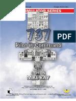 737 Manual_ESpañol simplificado.pdf