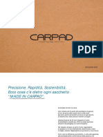 Car Pad Catalogo Shopping Bag