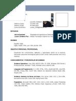 Curriculum Vitae (ejemplo)