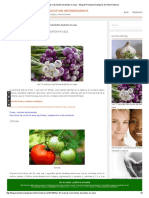 Las 10 verduras más fáciles de plantar en casa.pdf