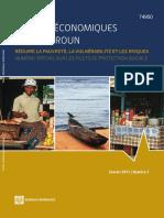 Cahiers Economiques Du Camerou_ Réduire La Pauvreté, La Vulnérabilité Et Les Risques Vol3