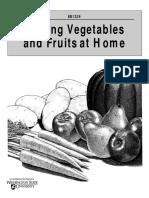 storing veg and fruits at home