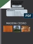 MADERA-CEDRO.pptx