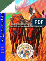 Revista Huellas 4 Observatorio Peru