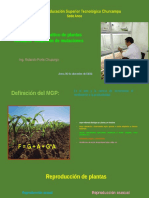 Mejoramiento Genético de Plantas Mediante Inducción de Mutaciones