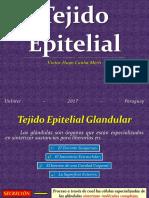 Tejido Epitelial Glandular
