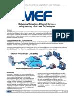 Access_WG_Whitepaper_FINALv3.pdf