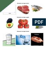 Alimentos de Origen Animal y Vegetal