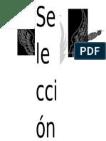 Logo Seleccion