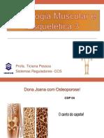 Pratica - Morfologia Muscular Esqueletica 3 e 4