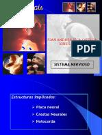 1.- Sistema Nervioso Embriologia (1)
