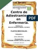 Republica de Honduras Informe de Plantas Medicinales