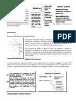 2.-EL-PARRAFO-SEGUN-LA-IDEA-PRINCIPAL (1).docx