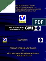 GMI_1