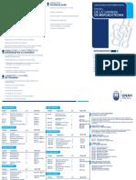 Plan de Estudios Mercadotecnia