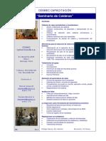 Seminario de Calderas (I-04)-R2.pdf