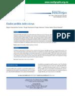 Endcarditis 1.pdf