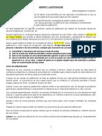ABORTO Y JUSTIFICACIÓN.docx