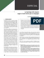 Tipologia Del Amparo