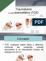 El Traumatismo Craneoencefálico TCE