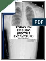 Documento de Texto Completo - Douglas Bustamante