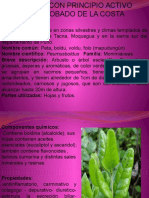 Plantas Medicinales Costa