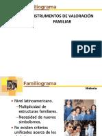 _INSTRUMENTOS.pdf